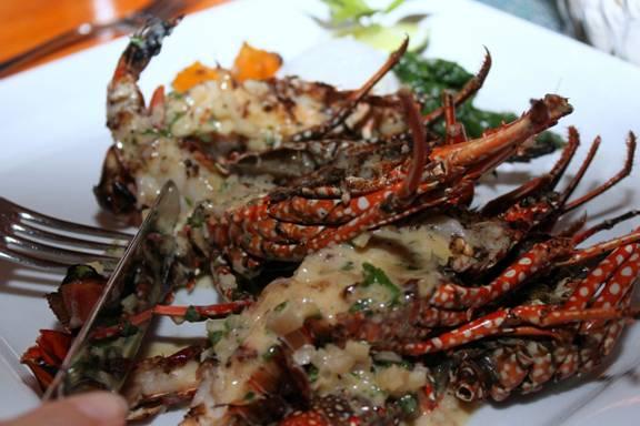 Anguillan crayfish